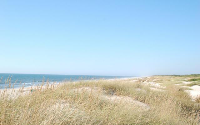 Vrede van de duinen