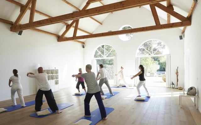 EVOLUTIE yogaruimte kopie
