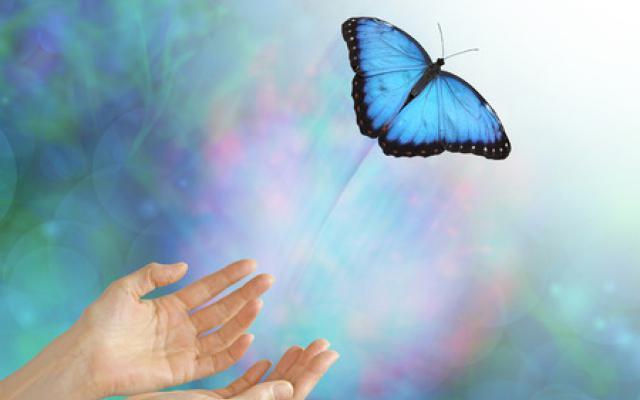 Spirituele Regulatie - Loslaten