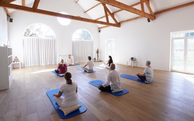 Dru yoga - ingeborg in-de-evolutie_w