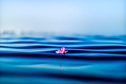 Ingeborg - Water - De evolutie (2)